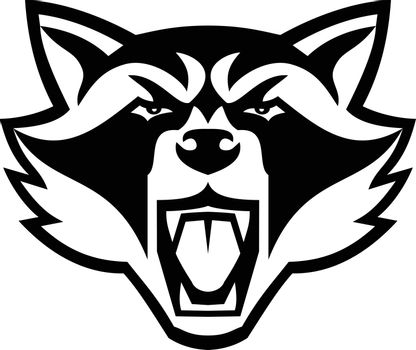 Mascot illustration of head of an angry raccoon, North American raccoon or northern raccoon, a medium-sized mammal front view on isolated background done in black and white retro style.