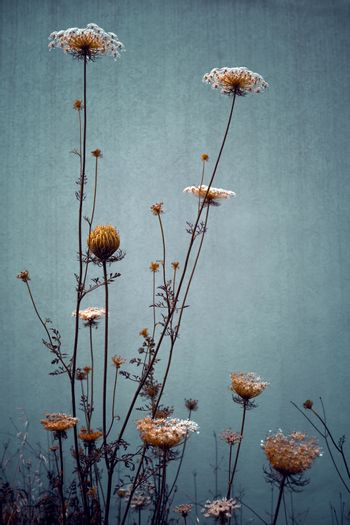 Flowers Background in Grunge Style. Beautiful Gentle Wildflowers. Stylish Floral Wallpaper. Rustic Style Bouquet.