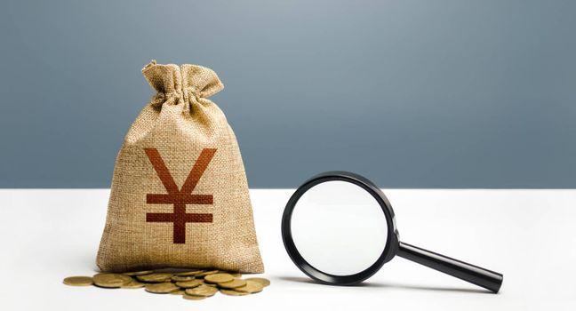 Yen yuan money bag and magnifying glass. Financial audit and monitoring of suspicious capital and transactions. Search for business beneficiaries. Attracting investments and financing. Budget check