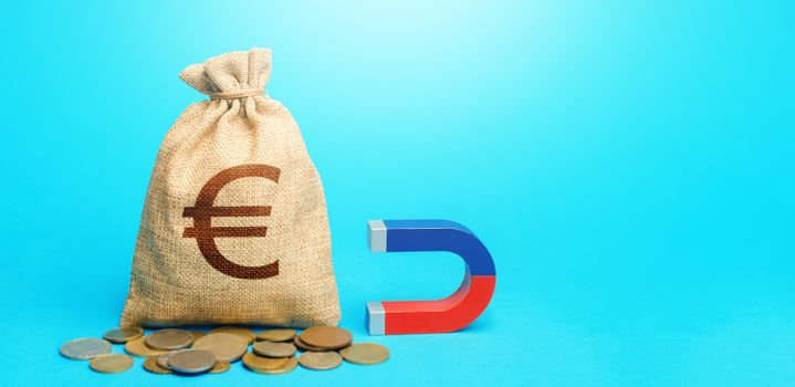 Euro money bag and magnet. Raising funds and investments in business projects and startups. Tax collection. Take part in tenders. Accumulation and attraction of capital. Money laundering
