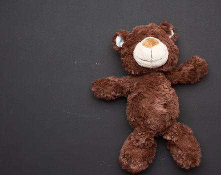 brown teddy bear on a black chalk board background, back to school, copy space