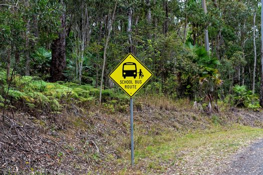 School bus route signage with icons in a bushland setting