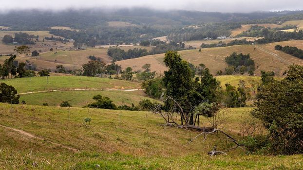 The undulating hills of dairy properties situated near tropical rainforest with cloudy sky and winding roads