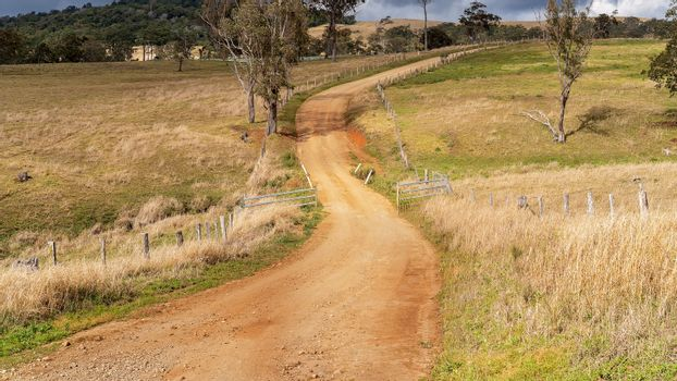 A winding rural dirt road leading through dairy properties in the mountains surrounded by tropical rainforest