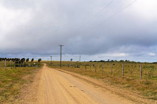 Power lines running alongside fence lines beside a dirt road on a rural dairy property in country Australia