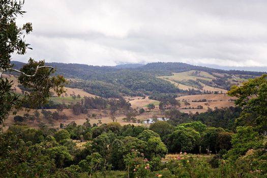 Trees Frame rural dairy farms in a valley between the mountains within a tropical rainforest