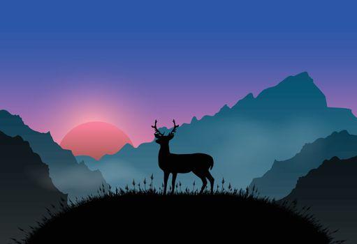 Deer standing on plateau point sunrise and fog. Nature landscape background