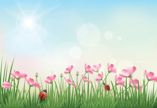 Paper art illustration of cosmos flowers and blue sky spring season paper cut style background