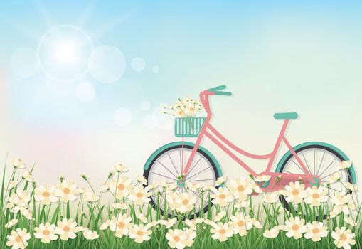 Cosmos flowers field and bicycle spring season paper art, paper cut style background