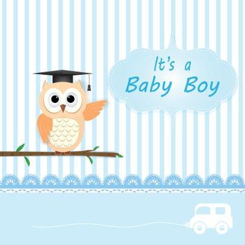 Baby boy shower card with Owl on blue. Greeting card paper art style illustration