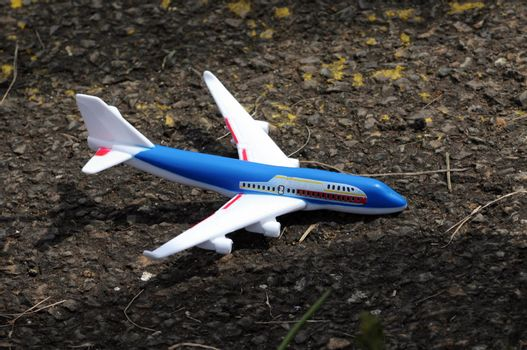 blue and white plastic toy airplane on a forest ground