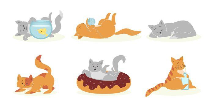 Playful gray and orange cats set