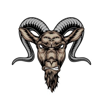 Colorful angry horned goat head