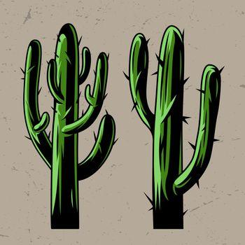 Green cactus plants concept