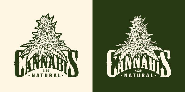 Vintage marijuana plant label