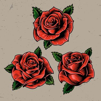 Vintage red blooming roses concept on gray background isolated vector illustration