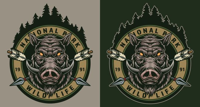 Vintage wildlife colorful round badge with cruel wild boar head crossed arrows and forest landscape isolated vector illustration