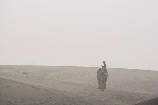 Jaisalmer, India - November 13, 2018: A man was riding camel in Thar Desert on November 13, 2018 in Jaisalmer, India