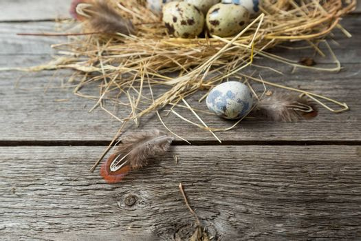 Quail eggs in a makeshift nest made of straw on a wooden background