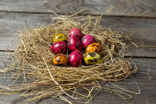 Painted easter eggs in a makeshift straw nest on a wooden background. Easter background