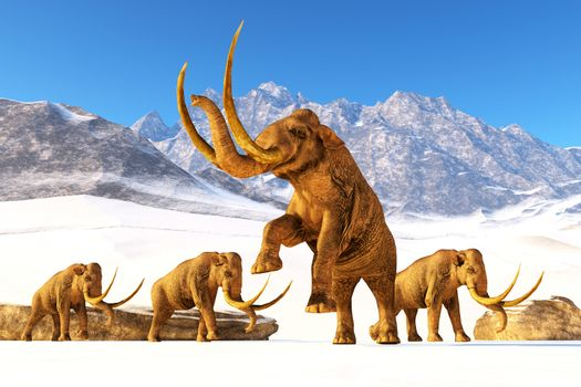 A herd of Columbian Mammoths navigate their way through a mountain range to get to a warmer climate.