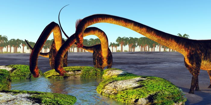 A herd of Barosaurus dinosaurs find a luscious water spring to quench their thirst during the Jurassic Period.