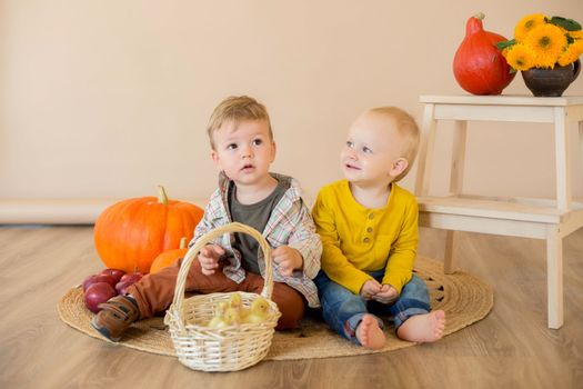 .Kids sit among pumpkins with a basket of ducklings