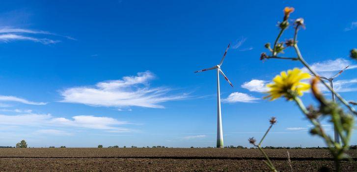 Wind generators in the field against a blue sky. Green technolog