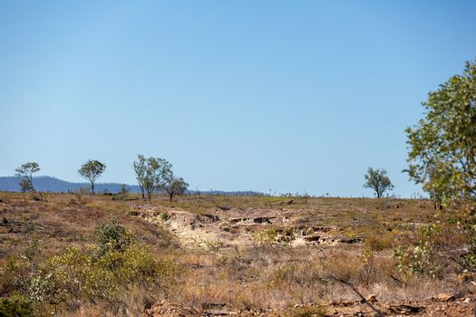 Land Made Barren By Removing Trees