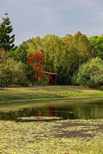Landscape Of Waterway And Forest In City Botanic Gardens