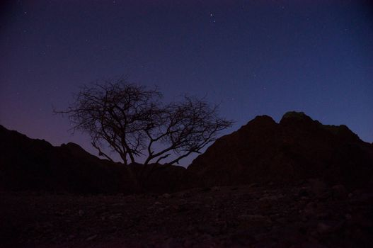 Israeli desert near Eilat southern border