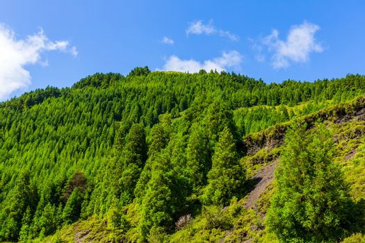 Beautiful landscape sceneries in Azores Portugal. Tropical nature in Sao Miguel Island, Azores.