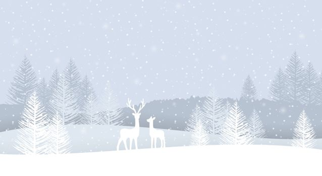 Vector illustration of a Christmas landscapes. Merry Christmas and Happy New Year greeting card