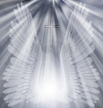 White wings and cross. 3D rendering