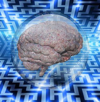 Brain in crystal ball. 3D rendering