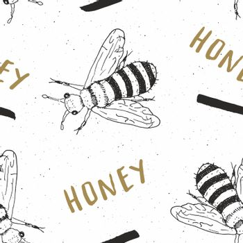 Bee hand drawn seamless pattern, with word honey vector illustration