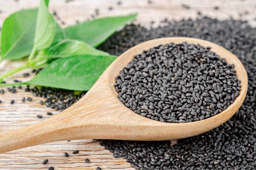 Law Hairy basil or Lemon basil seeds in wooden spoon with green leaf.
