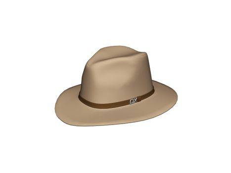 brown cowboy hat with brim and hat band