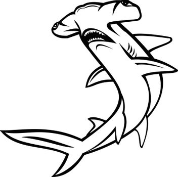 Scalloped Hammerhead Shark or Sphyrna Lewini Swimming Up Mascot and White