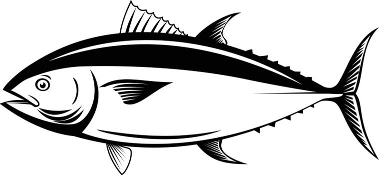 Retro style illustration of an Atlantic bluefin tuna, northern bluefin tuna, giant bluefin tuna or tunny, a fish species in the family Scombridae viewed from side isolated background black and white.
