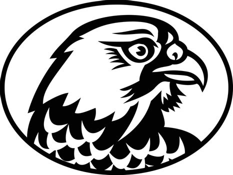 Mascot illustration of head of a peregrine falcon or the duck hawk in North America, a bird of prey in the family Falconidae, viewed from side on isolated background in retro black and white style.