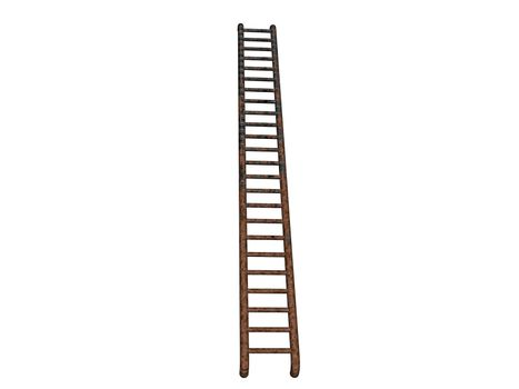 long wooden ladder with rungs