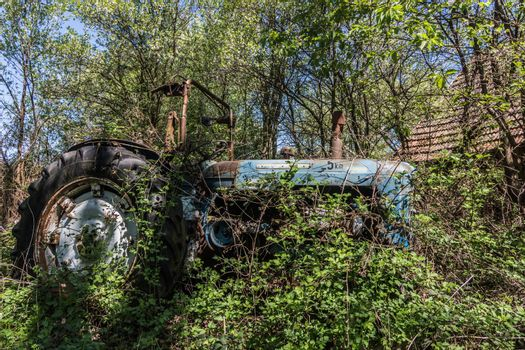 old overgrown blue tractor from the side
