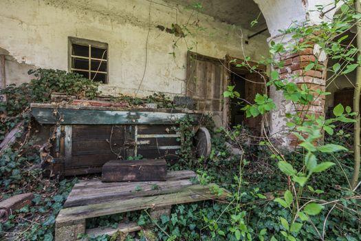 overgrown entrance from an old farmhouse