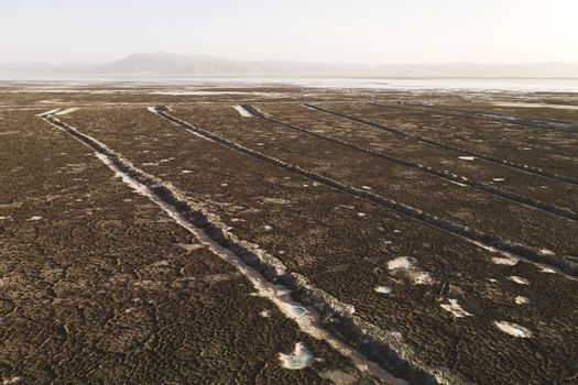 The dry land, the soil by the salt lake in Qinghai, China.