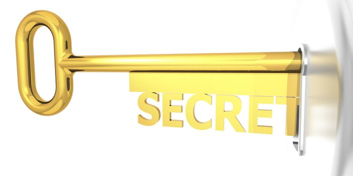 Secret key plug into key hole, 3D rendering