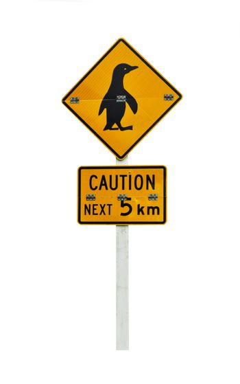 New Zealandian sign of penguin bird crossing the road isolated on white