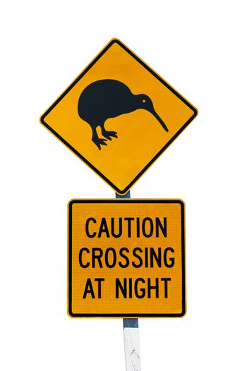 New Zealandian sign of kiwi bird crossing the road at night isolated on white