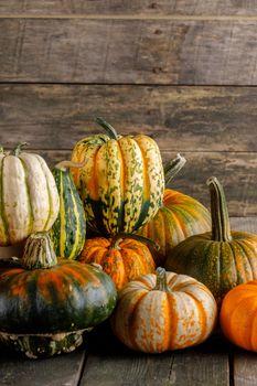 Many colorful pumpkins