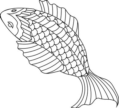 flat line art sketch illustration of fish in asian style